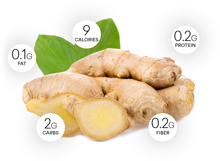 ginger root health benefits and nutrition facts