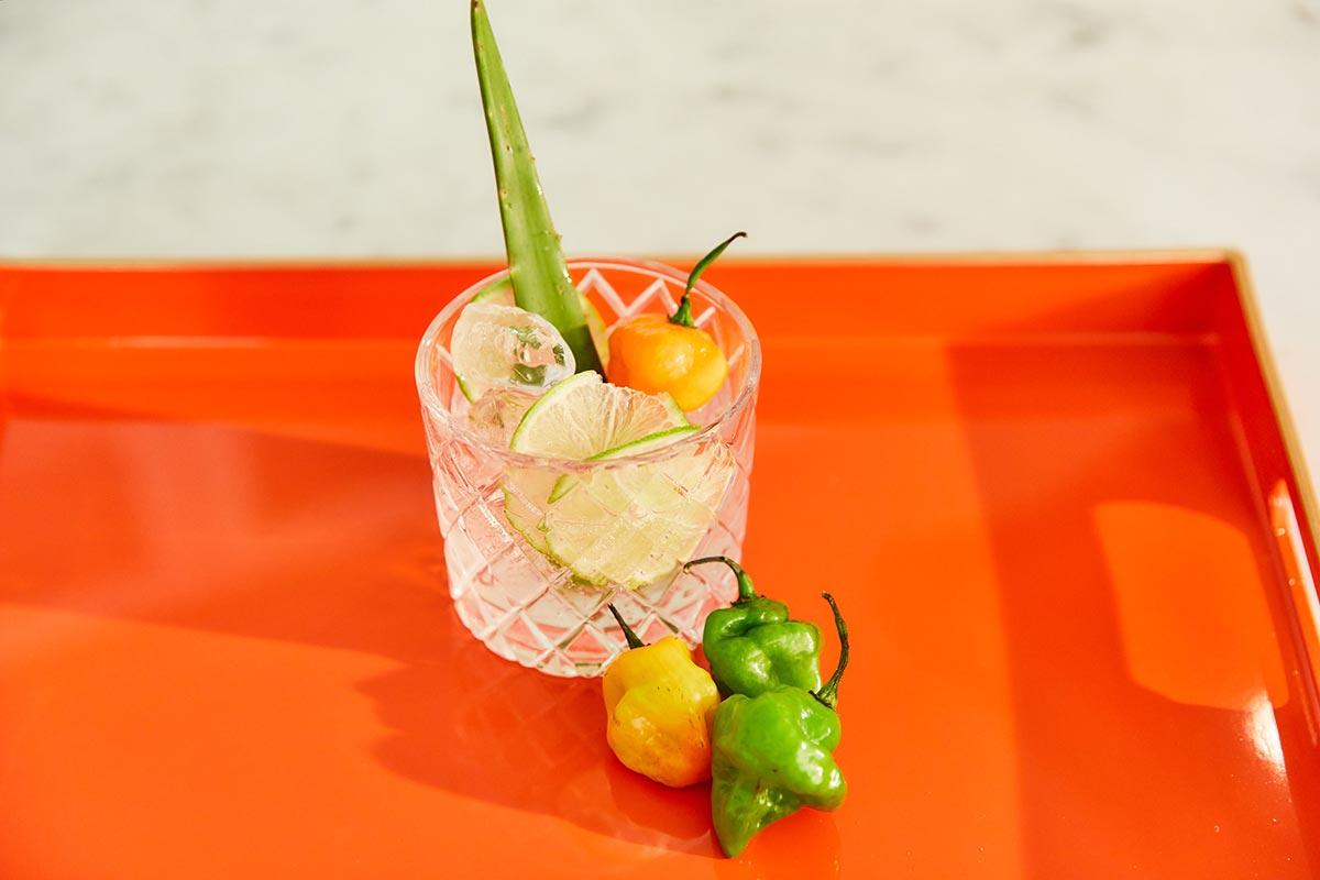 Spicy aji cachucha pepper margarita cocktail